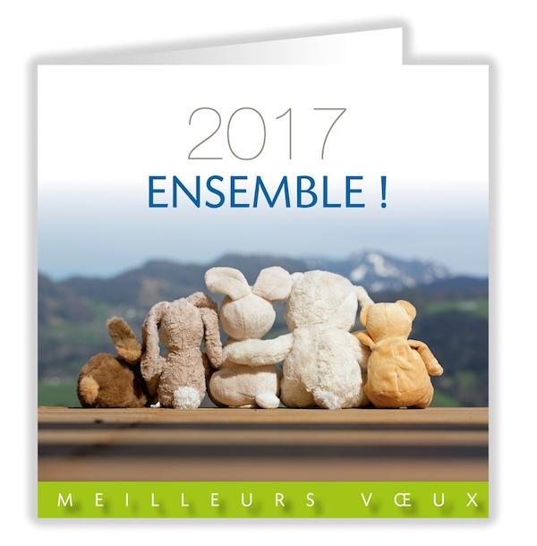 Ien circonscription d pinay sur seine une tr s belle ann e 2017 tous - Texte carte de voeux 2017 ...